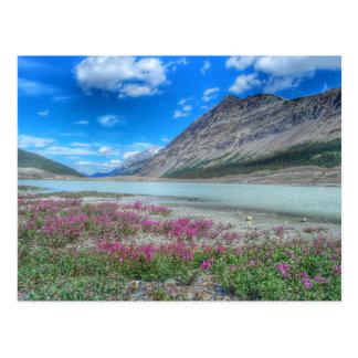 En las montañas rocosas de banff postal