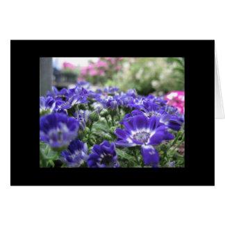 En violeta… tarjeta