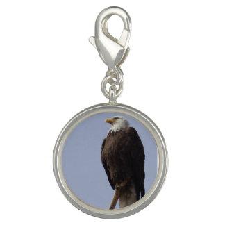 Encanto de American Eagle Dije