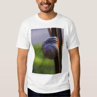 encanto del MES del slo Camisetas