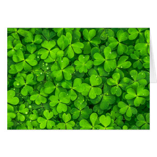 Encuentre la tarjeta del día del St. Patricks del