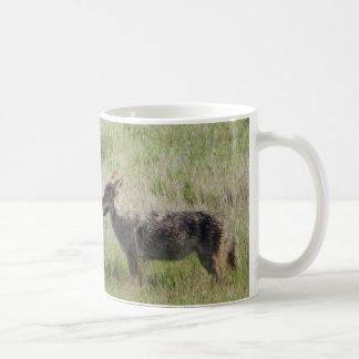 Encuentro del coyote taza de café