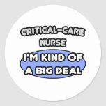 Enfermera del Crítico-Cuidado. Clase de una gran c Pegatinas