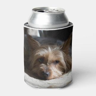 Enfriador De Latas Yorkshire/Terrier sedoso puede y embotella