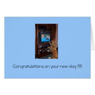 ¡Enhorabuena en su nuevo perro!!! Tarjeta