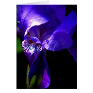 ¡Enhorabuena!! tarjeta con el iris