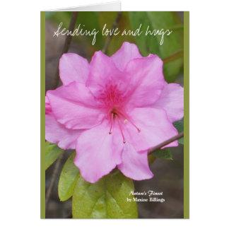 Envío de la tarjeta del amor y de los abrazos