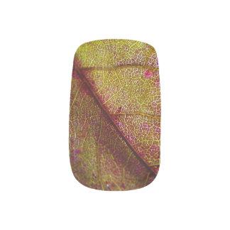 Envolturas Para Uñas Arte del clavo de las hojas de otoño