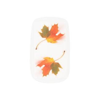 Envolturas Para Uñas Hojas de otoño