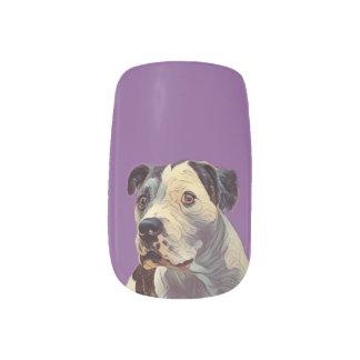 Envolturas Para Uñas Pitbull púrpura