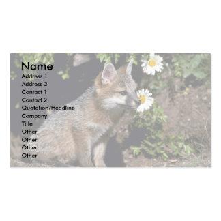 Equipo Fox-joven gris Plantilla De Tarjeta De Negocio