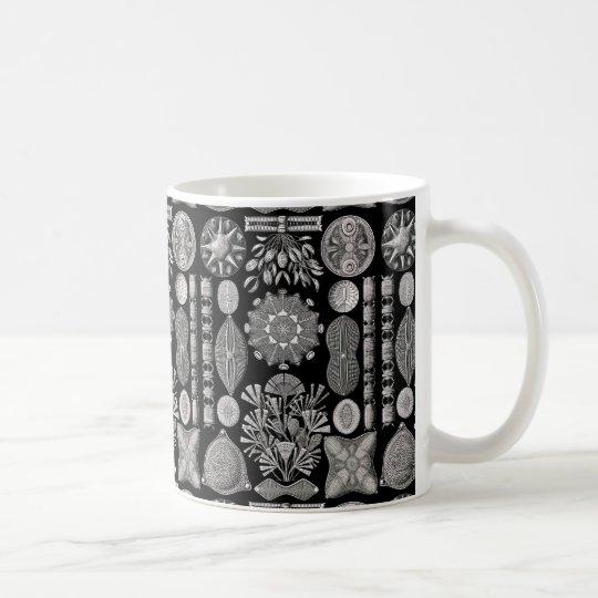 Ernst Haeckel Diatomea Taza De Café