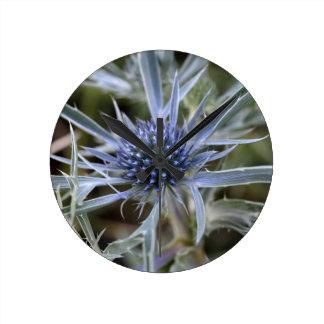 Eryngo Amethyst (amethystinum del Eryngium) Reloj Redondo Mediano