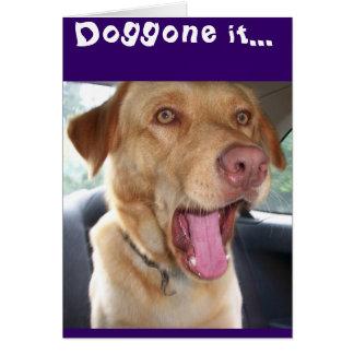 ¡Es cumpleaños del YER doggone él! Tarjeta De Felicitación