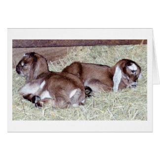 ¡Es gemelos! Tarjeta De Felicitación