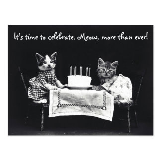 Es hora de celebrar la postal del gato
