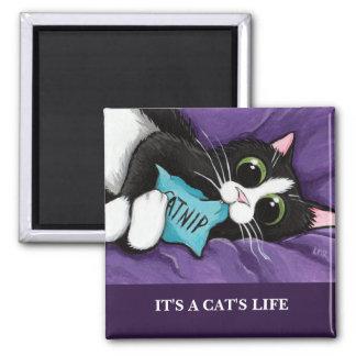 Imán Es imán del arte del gato de la vida el |