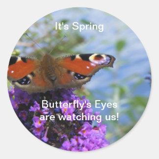 ¡Es los ojos de la mariposa de la primavera nos Pegatina Redonda