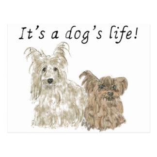 Es postal linda divertida del arte de los perros