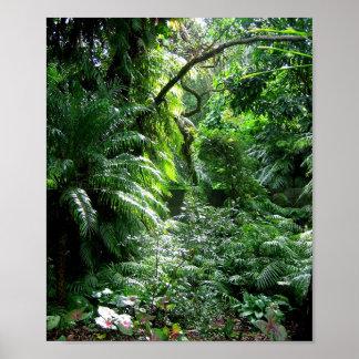 Es una selva hacia fuera allí ..... póster