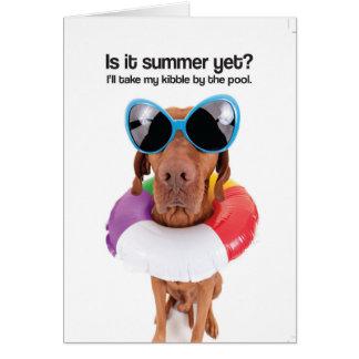 ¿Es verano todavía? (Vizsla) - tarjeta de