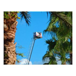 escalera del coche de bomberos contra las palmeras tarjeta publicitaria