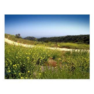 Escape de la montaña de California Postal