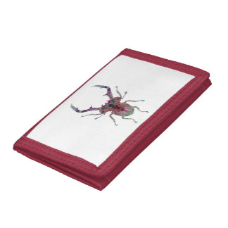 Escarabajo de macho