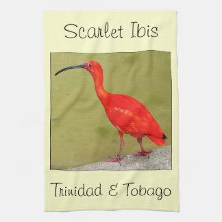 Escarlata rojo Ibis de Trinidad and Tobago Toallas De Cocina
