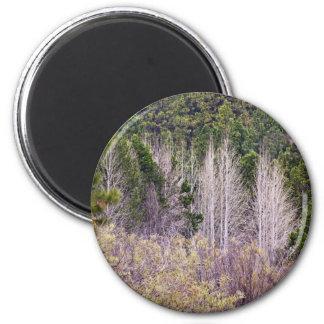 Escena del bosque imán redondo 5 cm