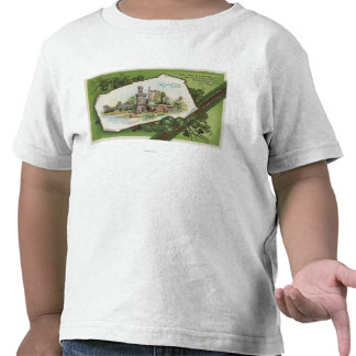 Escena del castillo de Shane Camisetas
