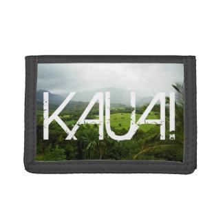 Escena del paisaje de Kauai, Hawaii