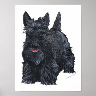 Escocés juguetón Terrier Póster