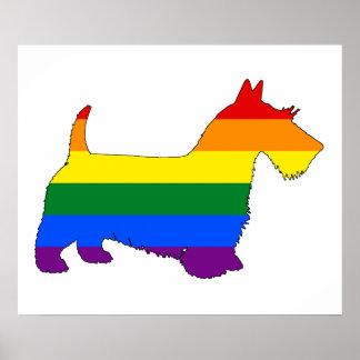Escocés Terrier del arco iris Póster