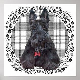 Escocés Terrier en el tartán Póster