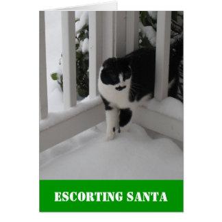 Escolta de la tarjeta de Santa por el gato de