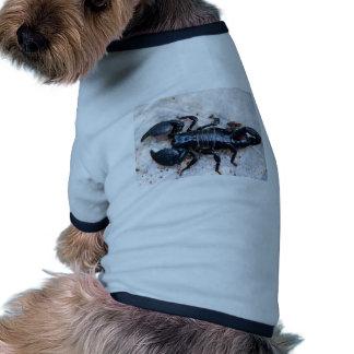 Escorpión Camisa De Perrito