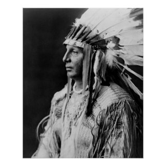 Escudo blanco - indio del nativo americano de Arik Posters