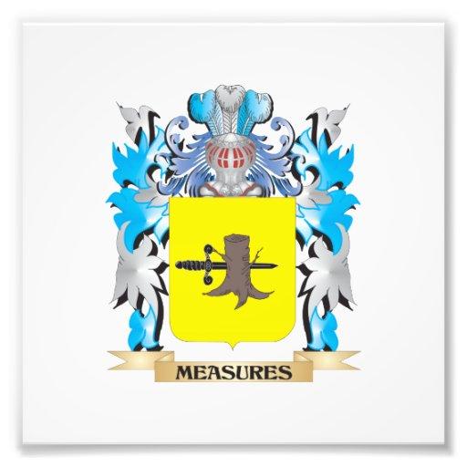 Escudo de armas de las medidas - escudo de la cojinete