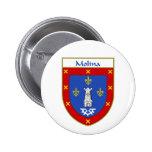 Escudo de armas de Molina/escudo de la familia Pins