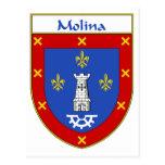 Escudo de armas de Molina/escudo de la familia Postales
