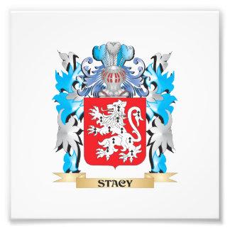 Escudo de armas de Stacy - escudo de la familia Cojinete