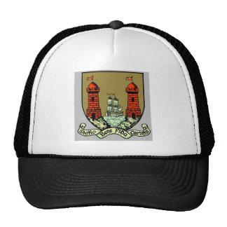 Escudo de armas para el corcho Irlanda Gorras