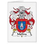 Escudo de la familia de Molina Felicitaciones