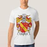 Escudo de la familia del caballero camisas