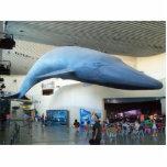 Escultura de la foto de Long Beach de la ballena a Esculturas Fotográficas