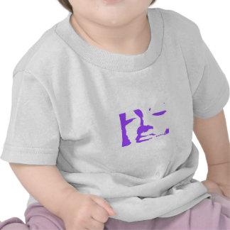 Esencia de Buda Camiseta