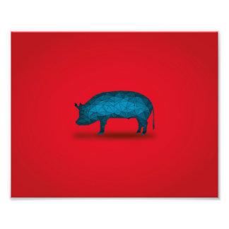 Eso hará el cerdo… arte fotográfico