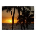 Espacio en blanco hawaiano de la tarjeta de felici