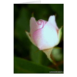Espacio en blanco rosado romántico Notecard del Tarjeta De Felicitación